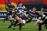 090117 AIL Dolphin V Blackrock College
